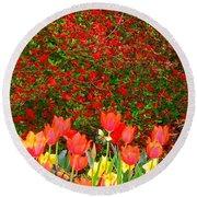 Red Tulip Flowers Round Beach Towel