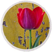 Red Tulip With Yellow Wall Round Beach Towel
