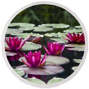 Red Water Lillies Round Beach Towel