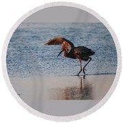Reddish Egret Doing A Forging Dance Round Beach Towel