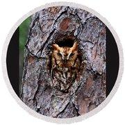 Reddish Screech Owl Round Beach Towel