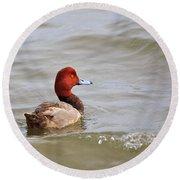 Redhead Duck Round Beach Towel