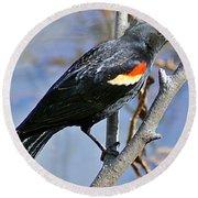 Redwinged Blackbird I Round Beach Towel