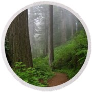 Redwood Path Round Beach Towel