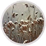 Reed In Snow Round Beach Towel by Joana Kruse