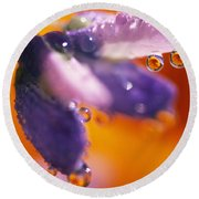 Reflection Of Flower In Dew Drops Round Beach Towel