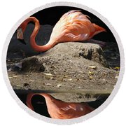 Reflections Of A Flamingo Round Beach Towel