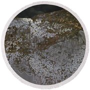 Reflections Of A Lacy Leaf Round Beach Towel