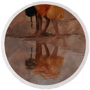 Reflections Of India Round Beach Towel