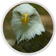 Regal Eagle Portrait Round Beach Towel