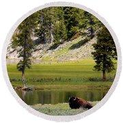 Resting Buffalo By Pond Round Beach Towel