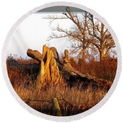 Resting Giant Round Beach Towel