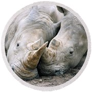 Rhino Love Round Beach Towel