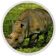 Rhinoceros 101 Round Beach Towel