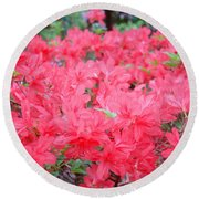Rhodies Art Prints Pink Rhododendrons Floral Round Beach Towel