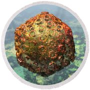 Rift Valley Fever Virus 1 Round Beach Towel by Russell Kightley