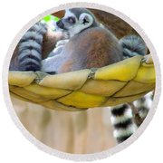Ring-tailed Lemur Round Beach Towel