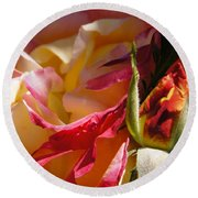 Rio Samba Rose And Bud Round Beach Towel