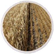 Ripened Wheat And Stubble In Saskatchewan Field Round Beach Towel