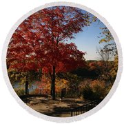 River Tree Round Beach Towel