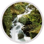 River With Trees In The Forest Round Beach Towel