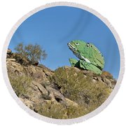 Road Frog Round Beach Towel