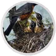 Robin And Babies In Nest Round Beach Towel