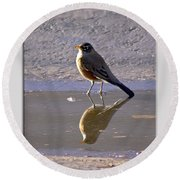 Robin Reflection Round Beach Towel