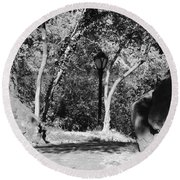 Rocks And Trees In Black And White Round Beach Towel