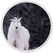 Rocky Mountain Goat Round Beach Towel