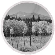 Rocky Mountain High Country Autumn Fall Foliage Scenic View Bw Round Beach Towel