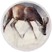 Roe Buck - Winter Round Beach Towel by Mark Adlington