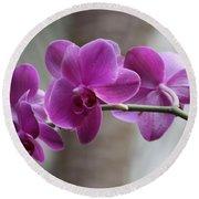 Romantic Purple Orchids Round Beach Towel