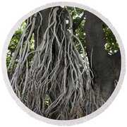 Roots From A Large Tree Inside Jallianwala Bagh Round Beach Towel