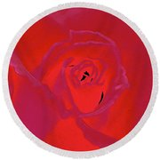 Rose 162 Round Beach Towel