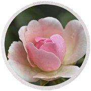 Rose Flower Series 12 Round Beach Towel