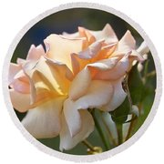 Rose Flower Series 15 Round Beach Towel
