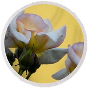 Rose Flower Series 3 Round Beach Towel