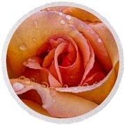 Rose Flower Series 8 Round Beach Towel