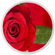 Rose Flower Wet 1 B Round Beach Towel