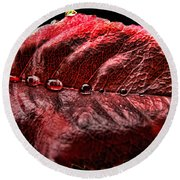 Rose Leaf Macro With Drops Round Beach Towel