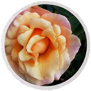 Rose Of Many Pastels Round Beach Towel