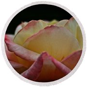 Rose Rising Round Beach Towel