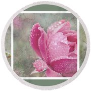 Rose Triptych 11 Round Beach Towel