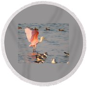 Roseate Spoonbill At The Bay Round Beach Towel