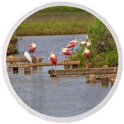 Roseate Spoonbills And Snowy Egrets Round Beach Towel