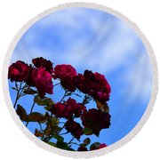 Roses In The Sky Round Beach Towel