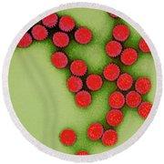 Rotavirus Round Beach Towel