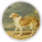 Rough-coated Collie Round Beach Towel