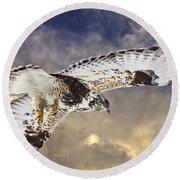 Rough Legged Hawk In Flight Round Beach Towel
